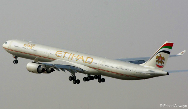 Etihad Airways plans to begin codesharing with American Airlines when the Abu Dhabi-based airline begins serving Chicago in September