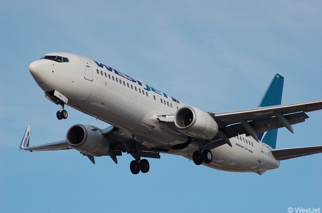 WestJet's late-2010 fleet of 90-plus Boeing 737NGs included at least a dozen Boeing 737-800s and the carrier's future orders will include many more as WestJet expands its network of longer sectors from Canada to Caribbean, Latin American and Hawaii sunspot destinations