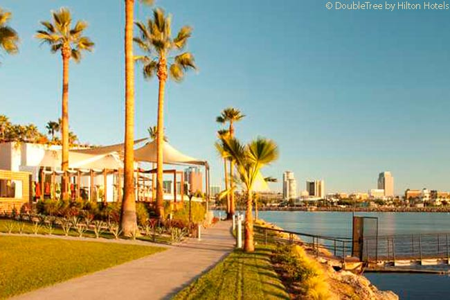 Along the quarter-mile length of the property, the 11-acre-plus grounds of the Hotel Maya border the shoreline of Long Beach Harbor and the shoreline path provides a pleasant stroll. Some of the nearly 500 palm trees in the grounds are 80 feet tall