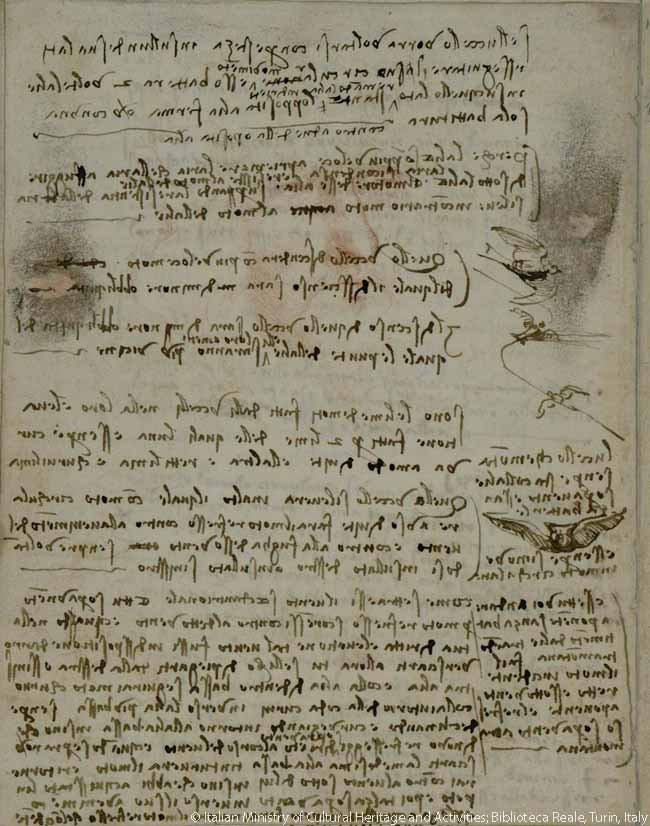 In his 'Codex on the Flight of Birds', Leonardo da Vinci discusses how birds manipulate their wings to sustain gliding flight. Da Vinci reused paper: note the self-portrait in red visible beneath his writing