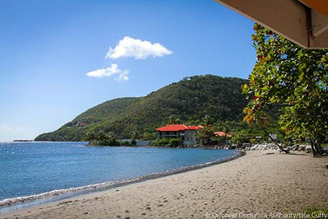 Purple Turtle Beach, Dominica. Photo courtesy of Discover Dominica Authority