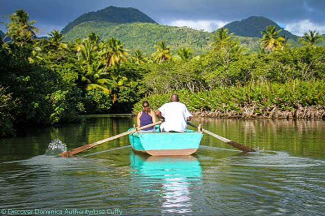 Indian River boating, Dominica. Photo courtesy of Discover Dominica Authority